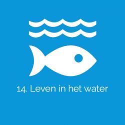 sdg-14-leven-in-het-water